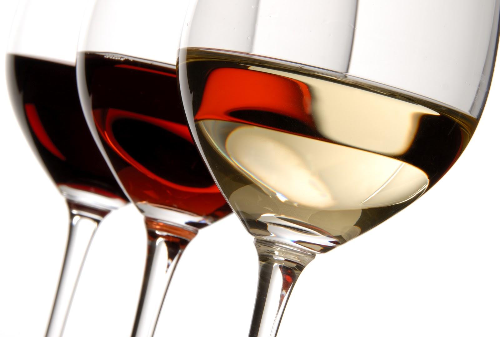 Rutas del vino en España